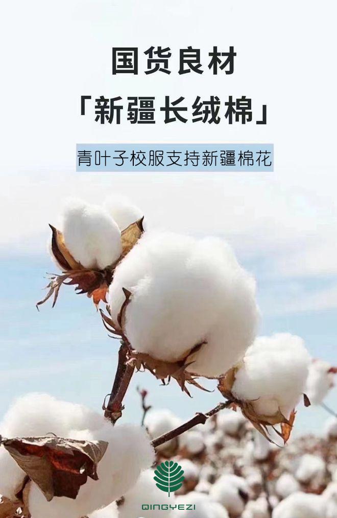 青叶子学生装支持新疆棉